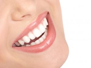 Importance of Dentist Massapequa New York